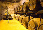 Oldest types of sherry barrel used, Gonzalez Byass bodega, Jerez de la Frontera, Cadiz province, Spain