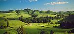 Farmland in the Manawatu/Whanganui Region. New Zealand.