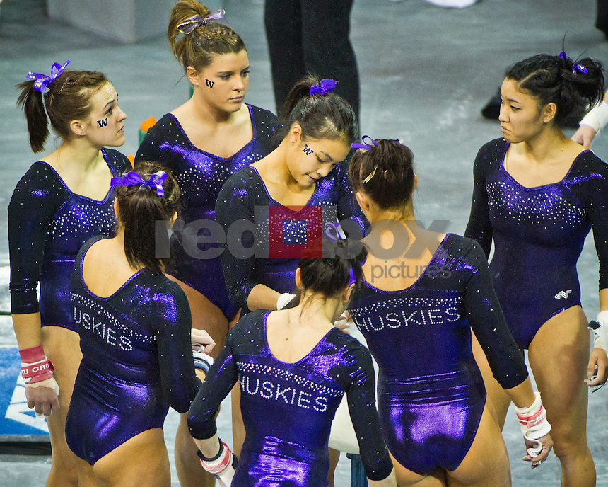 Team chalks up for bars competition..Washington Huskies gymnastics vs. the UCLA Bruins at Alaska Airlines Arena at Hec Edmundson Pavilion in Seattle on Friday, January 27, 2012. (Photo by Dan DeLong/Red Box Pictures)
