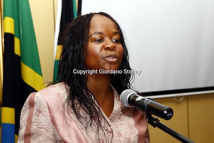"PRETORIA - 3 December 2010 - Newly appointed South African Deputy Health Minister Dr. Gwendoline ""Gwen"" Malegwale Ramokgopa addresses delegates at the Southern African Network of Nurses and Midwives -- APP/Allied Picture Press"