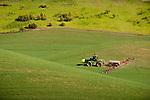 John Deere 8700 tractor fertilizes wheat field during spring in Washington's Palouse