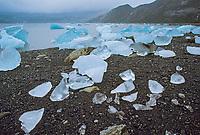 Glacial icebergs stranded on beach in Nellie Juan Lagoon, Prince William Sound, Alaska