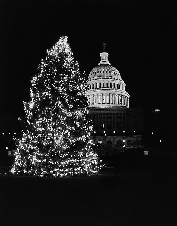 Illuminated Capitol Hill Christmas Tree during Christmas in 1981. (Photo by Keith Jewell/CQ Roll Call via Getty Images)