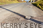 Pot holes on the Dale Road between Ballyduff and Ballinclogher cross.