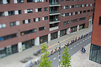Peloton from above. <br /> <br /> 51th GP Jef 'Poeske' Scherens 2017 <br /> Leuven - Leuven (13local laps/153.7km)