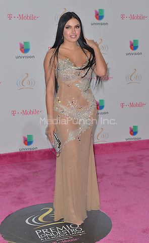 MIAMI, FL - FEBRUARY 23: Guest attends Univision's 29th Edition of Premio Lo Nuestro A La Musica Latina at the American Airlines Arena on February 23, 2017 in Miami, Florida.  Credit: MPI10 / MediaPunch