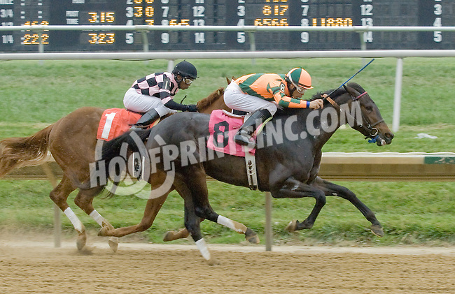 Flash Fever winning at Delaware Park on 10/25/12