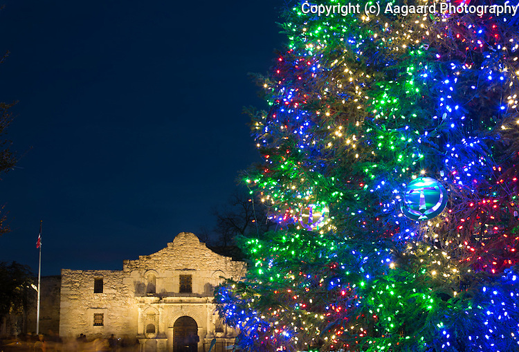 The Alamo with Christmas tree at dusk, 2014.  Canon EOS 5D III, Canon 24-105 f/4L lens