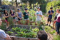 Dylan Bruce '16. Photo from the F.E.A.S.T (Food Energy and Sustainability Team) student-run organic garden at UEPI.<br /> (Photo by Marc Campos, Occidental College Photographer)