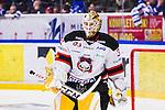 S&ouml;dert&auml;lje 2014-01-06 Ishockey Hockeyallsvenskan S&ouml;dert&auml;lje SK - Malm&ouml; Redhawks :  <br />  Malm&ouml; Redhawks m&aring;lvakt Robin Rahm har r&auml;ddat den avg&ouml;rande straffen i straffl&auml;ggningen<br /> (Foto: Kenta J&ouml;nsson) Nyckelord:  glad gl&auml;dje lycka leende ler le portr&auml;tt portrait