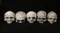 BNPS.co.uk (01202 558833)<br /> Pic: ThomsonRoddick/BNPS<br /> <br /> Five 19th century cast plaster skulls sold for &pound;1,800.<br /> <br /> These disturbing Victorian plaster cast heads of notorious criminals are a far cry from today's bland mugshots of lowlifes.<br /> <br /> Two of the heads have been identified as Benjamin Courvoisier, a serial killer in the mould of Jack the Ripper, and coachman Daniel Good who mutilated his pregnant mistress. <br /> <br /> In total, nine heads were discovered at an outbuilding at a rural home just outside Penrith, Cumbria, which have now fetched almost &pound;40,000 at auction. <br /> <br /> Experts predicted the collection of heads would sell for &pound;2,000  but Courvoisier's head alone went for &pound;20,000.<br /> <br /> Two of the heads were made by the famous British exponent of phrenology, James De Ville, who built a private museum of more than 5,000 specimens.