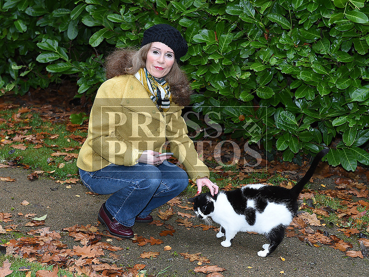 Una Molyneux who has helped with the cat population in Drogheda. Photo:Colin Bell/pressphotos.ie