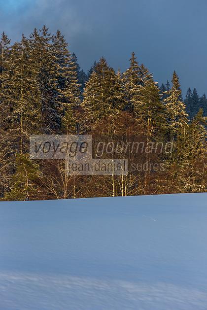 Europe/Allemagne/Bade-Würrtemberg/Forêt Noire/Env de Baiersbronn: