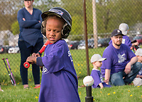The SMAA baseball season is in full swing and kids are happy to be chasing the ball. Instructional t-ball players from the Aamjiwnaang Talons faced Elk's Lodge which kept players learning the basics of the game.