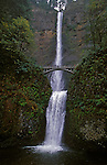 Plummeting 620 feet from its origins on Larch Mountain, Multnomah Falls is the second highest year-round waterfall in the United States.  Nearly two million visitors a year come to see this ancient waterfall making it Oregon?s number one public destination...Fed by underground springs from Larch Mountain, the flow over the falls varies usually being highest during winter and spring..Multnomah Falls offers one of the best places in the Columbia River Gorge National Scenic Area to study geology exposed by floods. Five flows of Yakima basalt are visible in the fall's cliff face.