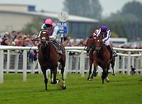 Horse Racing 2012-05