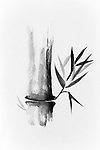 Beautiful Zen painting of bamboo stalk and leaves. Sumi-e Chinese Japanese black ink on rice paper illustration fine art.
