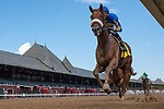 August 22, 2020: Ampersand #4, ridden by Jose LezcanoS SAEZ, wins race 1 0f the The FourStarDave day at Saratoga Race Course in Saratoga Springs, New York. Rob Simmons/CSM