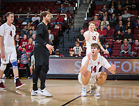 STANFORD, CA - January 5, 2019: Kyler Presho, Jordan Ewert, Paul Bischoff at Maples Pavilion. The Stanford Cardinal defeated UC Santa Cruz 25-11, 25-17, 25-15.