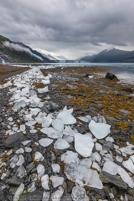 Stranded icebergs line a beach in College Fjord with Harvard tidewater glacier in the distance. Prince William Sound, Alaska.