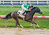 Daddy's Keely winning at Delaware Park on 9/3/12