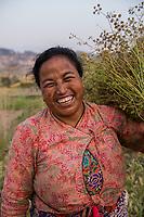 Nepal, Kathmandu. Women working  in the agricultural fields.