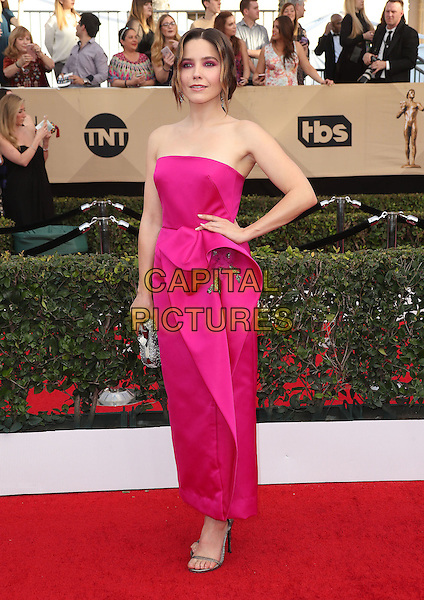 29 January 2017 - Los Angeles, California - Sophia Bush. 23rd Annual Screen Actors Guild Awards held at The Shrine Expo Hall. <br /> CAP/ADM/FS<br /> &copy;FS/ADM/Capital Pictures