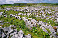 The Burren, limestone Karst topography in County Clare, Ireland, AGPix_0529.   .