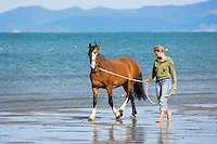 barefoot female walking horse along empty beach