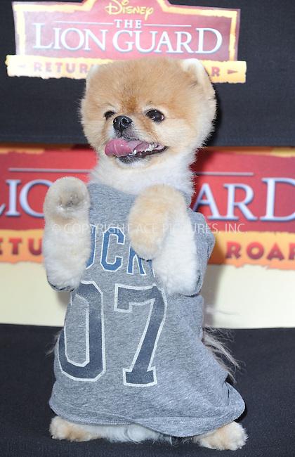 WWW.ACEPIXS.COM<br /> <br /> November 14 2015, LA<br /> <br /> Jiff the Dog arriving at the premiere of Disney Channel's 'The Lion Guard: Return Of The Roar' at Walt Disney Studios on November 14, 2015 in Burbank, California.<br /> <br /> <br /> By Line: Peter West/ACE Pictures<br /> <br /> <br /> ACE Pictures, Inc.<br /> tel: 646 769 0430<br /> Email: info@acepixs.com<br /> www.acepixs.com