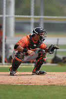 Catcher Zane Chavez (19) of the Baltimore Orioles organization during a minor league spring training camp day game on March 23, 2014 at Buck O'Neil Complex in Sarasota, Florida.  (Mike Janes/Four Seam Images)