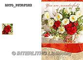 Alfredo, FLOWERS, BLUMEN, FLORES,  photos+++++,BRTOPHURFSH2,#F#