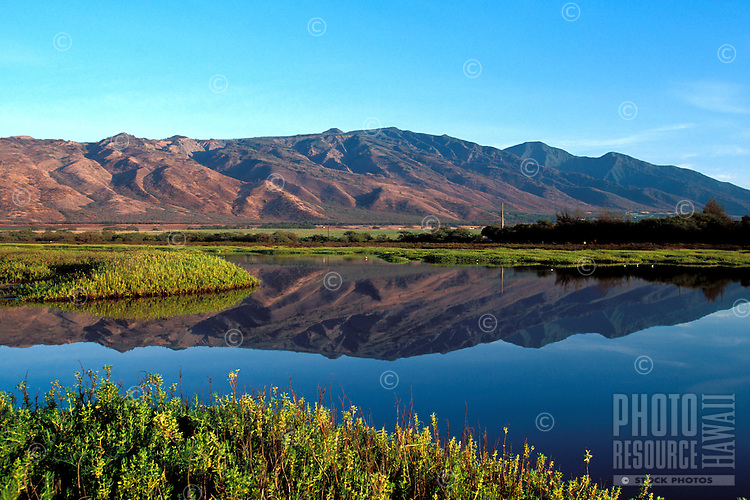 Kealia Pond reflects the West Maui Mountains on a calm day, Maui.