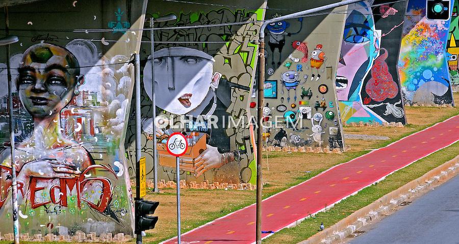 Grafites na Avenida Cruzeiro do Sul. Sao Paulo. 2014. Foto de Marcia Minillo.