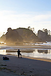 Olympic National Park, Shi Shi Beach, Point of the Arches, hiker at low tide, Olympic Coast National Reserve, Washington State, Pacific Ocean, Pacific Northwest, U.S.A.,