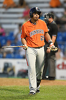 Aberdeen IronBirds third baseman Hector Veloz (29) walks back to the dugout after breaking his bat after a strikeout during a game against the Williamsport Crosscutters on August 4, 2014 at Bowman Field in Williamsport, Pennsylvania.  Aberdeen defeated Williamsport 6-3.  (Mike Janes/Four Seam Images)