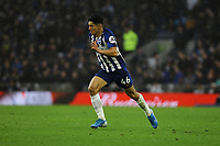 Steven Alzate of Brighton & Hove Albion during Brighton & Hove Albion vs Norwich City, Premier League Football at the American Express Community Stadium on 2nd November 2019