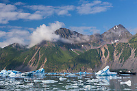 Scenic of icebergs in Bear Glacier Lagoon, Kenai Fjords National Park, southcentral, Alaska.