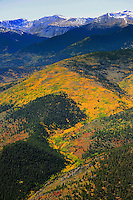 Aspen near Colorado and New Mexico border. Sangre de Cristo mountains.