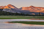 Sunset on the Sierra at Tuolumne Meadows, Yosemite National Park, California