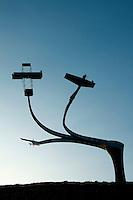 Aviation Sculpture, Lanark Loch, Lanark, South Lanarkshire