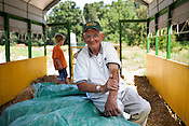 """""""Farmer"""" Bob Nutter, owner of Maple View Farms, Friday, July 2, 2010."""