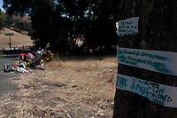 Isaac Brott Roadside Memorial _ Day 7