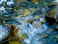 """JEWEL BASIN JEWEL""<br />