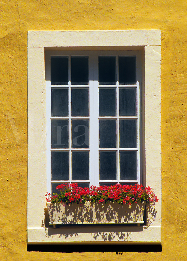 Window with flowers, Quebec City