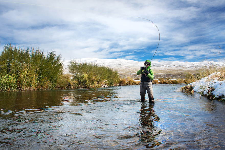 A fly fisher fights a rainbow trout on a small stream near Dillon, Montana.