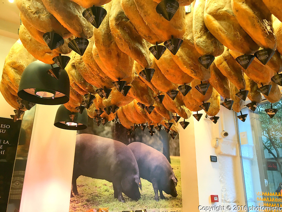 more dead pigs