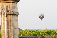 Vineyard and hot air balloon. Over Clos des Epenots. Pommard, Cote de Beaune, d'Or, Burgundy, France