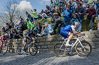 Tom Boonen (BEL/Quick-Step Floors) fires the peloton up the infamous Muur van Geraardsbergen (1100m/7.6%) that is back in the parcours after a 5 year hiatus<br /> <br /> 101th Ronde Van Vlaanderen 2017 (1.UWT)<br /> 1day race: Antwerp › Oudenaarde - BEL (260km)