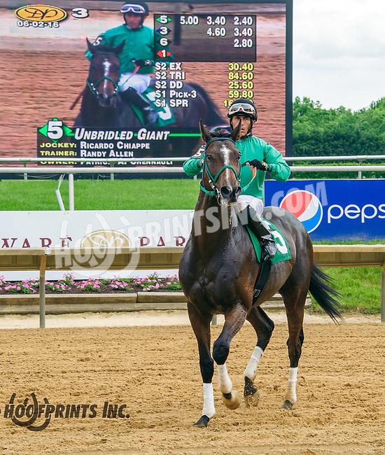 Unbridled Giant winning at Delaware Park on 6/2/16